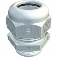 V-TEC PG13.5 SGR (50 Stück) - Verschraubung V-TEC PG13.5 SGR