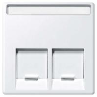 MEG4574-0419 - Zentralplatte 2fach polarws MEG4574-0419