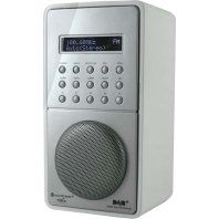 DAB100WS ws - DAB+Radio UKW-RDS DAB100WS ws