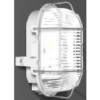 501030.009.1 - LED-Ovalleuchte 3000K 176x122x110 501030.009.1
