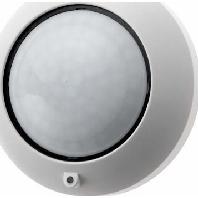 170111 - BLC Deckenwächter 360 Haus elektronik polarweiß 170111
