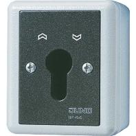 806.28 G - Schlüsselschalter 16AX 250V 2-pol. 806.28 G