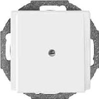 295619 - Zentralplatte pws Leitungsauslass 295619