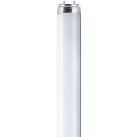 L 16/840 ES T8 - Leuchtstofflampe L 16/840 ES T8