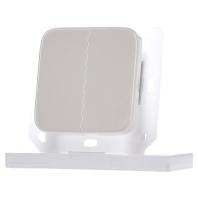 FT55R-weiß - Funktaster weiß FT55R-weiß