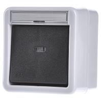 011231 - Kontrollausschalter gr 2-polig, AP-WD 011231