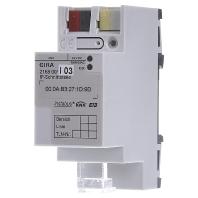 216800 - IP-Schnittstelle KNX/EIB REG 216800 - Aktionspreis