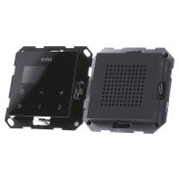 228028 - Unterputz-Radio RDS System 55 anth 228028 - Aktionspreis