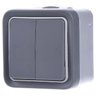 69725 - Doppeltaster gr 2.Schlie. AP, 10A,250V, IP55 69725