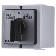 DS 10 - Drehschalter Wechselstrom Aufputz DS 10