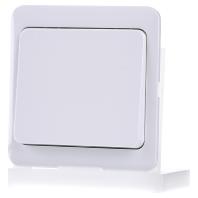 D 80.420.02 - Tastaufsatz rws für Dimmer/Schalter D 80.420.02