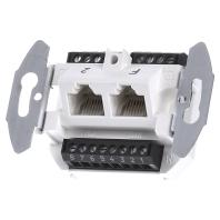 G 3120 - UAE Anschlussdose 2-fach 8/8 polig G 3120