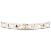 Image of 50407625 - LEDlight flex 12 8P 24VDC 756cm 2500K 50407625