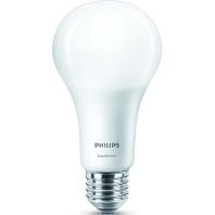 Philips SceneSwitch LEDbulb E27 A67 14W 827 Mat | SceneSwitch Dimbaar Vervangt 100W