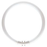 TL5 C 55W/830 - Leuchtstofflampe 55W wws ringförmig TL5 C 55W/830