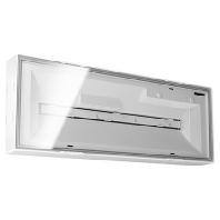 ELX 20 LEDi Flat 3h  - Notleuchte Deckenaufbau 3h ELX 20 LEDi Flat 3h