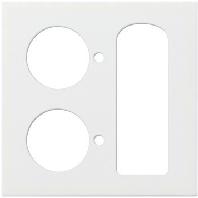 116803-zentralplatte-rws-gl-f-anwesenheitstaster-116803