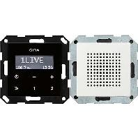 228003 - Unterputz-Radio RDS System 55 rws 228003