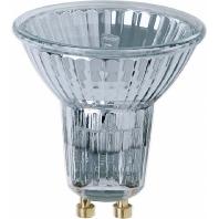 64826 FL  - Halopar 16 Lampe 50W 230V GZ10 Cool 64826 FL