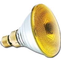 PAR38 80W FL 30 ge (10 Stück) - Lampe Flood 240V E27 30Gr PAR38 80W FL 30 ge