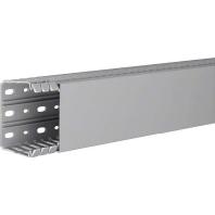 ba7-60080-gr-2-meter-verdrahtungskanal-60x80mm-ba7-60080-gr, 20.20 EUR @ eibmarkt