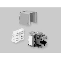 6830 1 800-04 (25 Stück) - KM8 modulare Buchse UTP schwarz, Kat. 6 6830 1 800-04