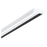 5041RPX-L #6601351 - LED-Rasterleuchte DALI 3000K 5041RPX-L 6601351