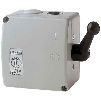 TWG 80 - Wendeschalter gußgekapselt, IP54 TWG 80