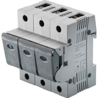 05861-063100-lasttrennschalter-63a-230v-1-n-05861-063100