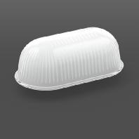 05-50200 - Ersatzglas strukturiert klar für L210mm 05-50200