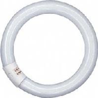 L 22W/827 C - Leuchtstofflampe G10q ringförmig L 22W/827 C