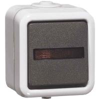 d-622-wab-glk-wippschalter-gr-kontrolll-10a-250v-2-pol-aus-d-622-wab-glk