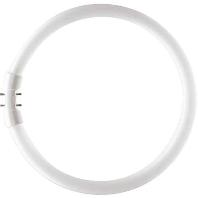 Ph Tl-Buis Master Tl5 Circular Super, Koel Wit, 22W
