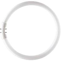 Ph Tl-Buis Master Tl5 Circular Super, Warm Wit, 40W