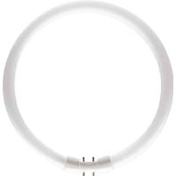 Ph Tl-Buis Master Tl5 Circular Super, Warm Wit, 60W