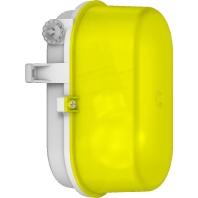 50605.007 - Kunststoff-Ovalleuchte ge A60 60W 50605.007