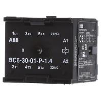 bc6-30-01-p-1-4-24-kleinschutz-bc6-30-01-p-1-4-24