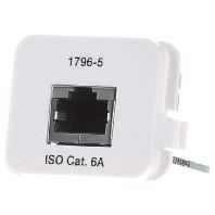 Image of 0-1711796-5 - Adaptereinsatz Kat.6A rws 1xRJ45 0-1711796-5