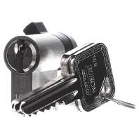 Image of 000100 - Profil-Halbzylinder sortiert 000100