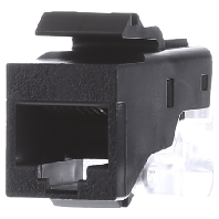 004500 - Buchse Mod.Jack AMP 8pol. 004500