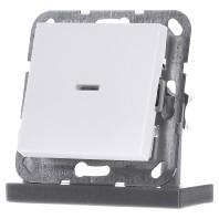 Gira drukvlakschakelaar dubbelpoligeschakelaar met controlelamp mat wit