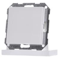 Gira blindplaat zuiverwit glanzend 026803