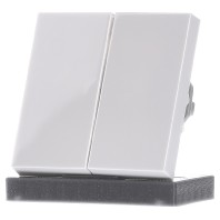 029503 - Wippe Seriensch. rws-gl System55 029503