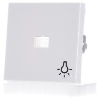 063003-wippe-rws-gl-symbol-licht-063003