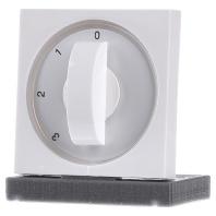 066903-zentralplatte-rws-gl-m-knebel-f-3-stufens-066903, 4.22 EUR @ eibmarkt