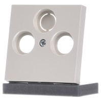 Gira inzetplaat centrale antenne creme wit systeem 55