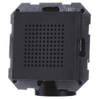 Gira luidspreker voor RDS radio antraciet