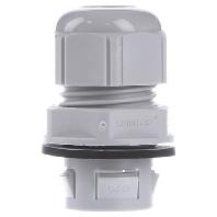 CLICK M20 R7035 LGY (25 Stück) - Kabelverschraubung SKINTOP CLICK M20 R7035 LGY