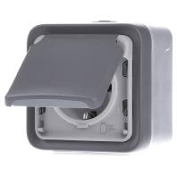 69730 - Schuko-Steckdose 1f. gr AP, 16A,250V, IP55 69730, Aktionspreis