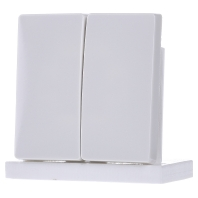 412599-wippe-pws-fur-serienschalter-412599-aktionspreis, 4.95 EUR @ eibmarkt